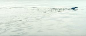 Kanaalzwemmer Loes Le Blanc Kaijen zwemt het Kanaal over voor Free a girl